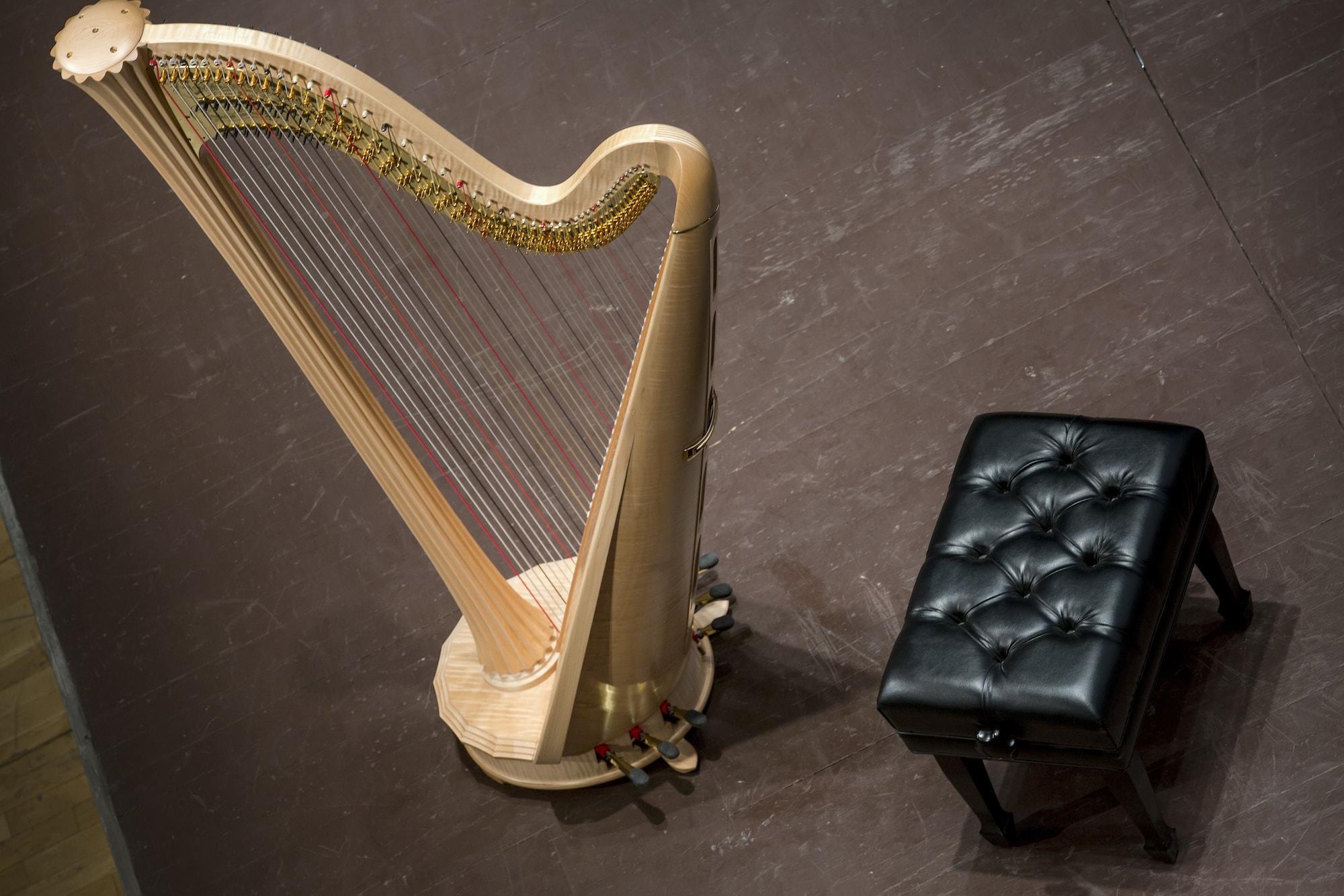 Arpa-terapia: il suono che raggiunge il cuore | Dipendiamo.blog