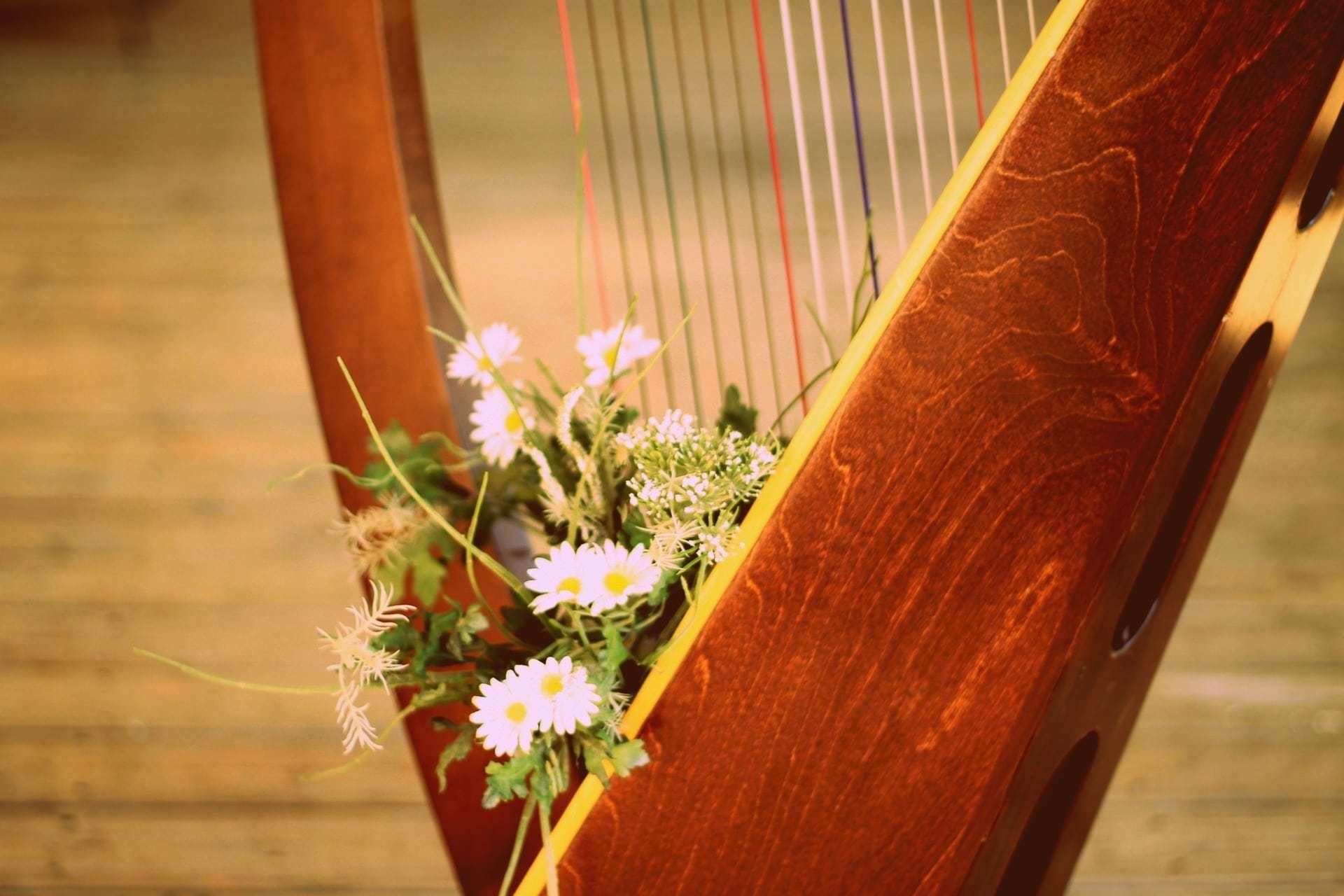 La Terapia con l'Arpa: il legno della gioia | Dipendiamo.blog